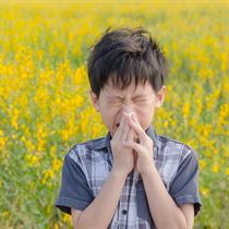 Allergies shutterstock_397846021